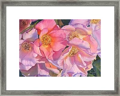Riot In Pink Framed Print