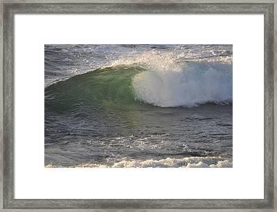 Rip Curl Framed Print