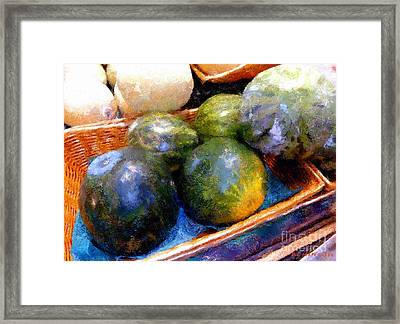 Ripe And Luscious Melons Framed Print by RC DeWinter