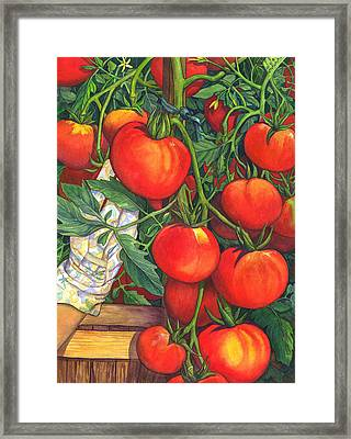 Ripe Framed Print by Catherine G McElroy