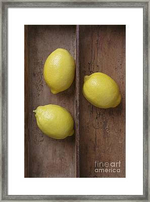 Ripe Lemons In Wooden Tray Framed Print by Edward Fielding