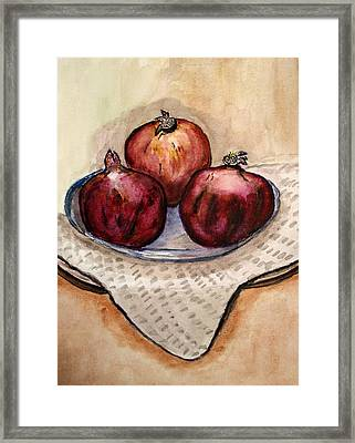 Ripe Pomegranates . Framed Print