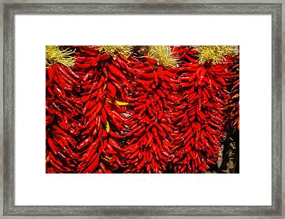 Rippening Red Peppers Framed Print