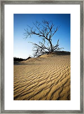 Rippled Sand Dunes Outer Banks Nc - Weathered Framed Print by Dave Allen