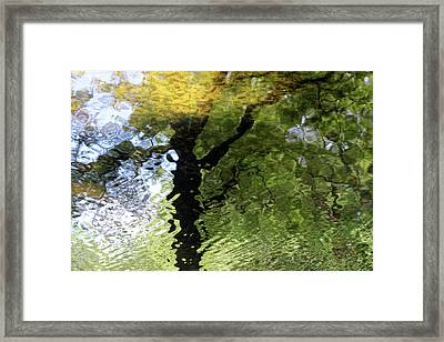 Ripples In Green Framed Print by Carolyn Stagger Cokley