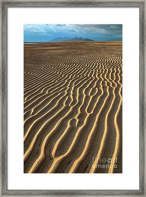 Ripples In Late Sunlight Framed Print