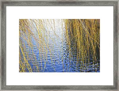 Ripples Framed Print by Linda Prewer