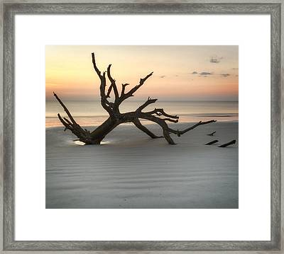 Ripples Of Sand And Driftwood Framed Print