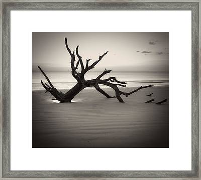 Ripples Of Sand And Driftwood Sepia Framed Print