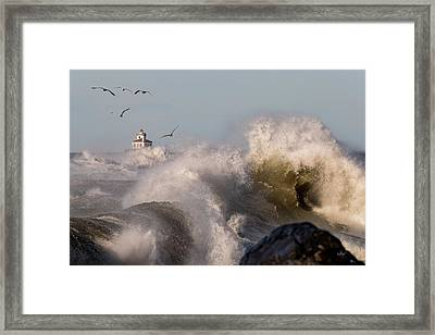Rise Above The Turbulence Framed Print by Everet Regal