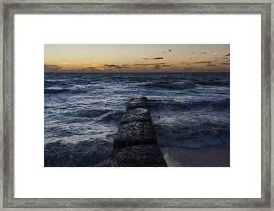 Rise Framed Print by Nicolas Artola
