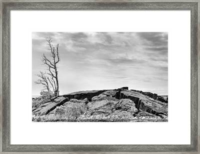 Framed Print featuring the photograph Rise by Ryan Manuel