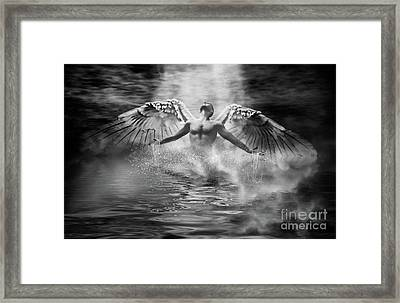 Risen Framed Print by John Edwards