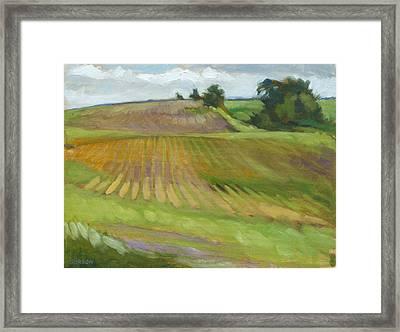 Rising Fields Framed Print
