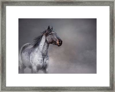 Rising From The Mist Framed Print