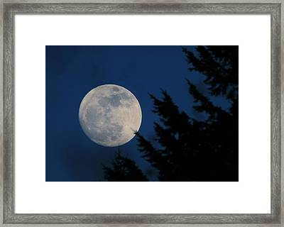 Rising High And Almost Full Framed Print