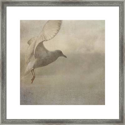 Framed Print featuring the photograph Rising Mist by Sally Banfill
