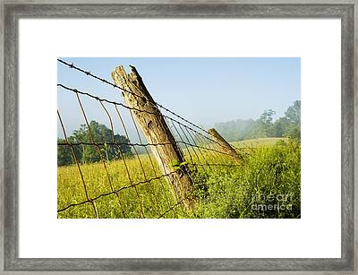 Rising Mist With Falling Fence Framed Print by Thomas R Fletcher