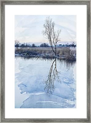 River Ant Framed Print by Svetlana Sewell