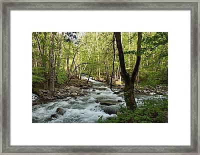 River At Greenbrier Framed Print by Sandy Keeton