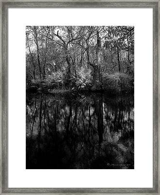 Framed Print featuring the photograph River Bank Palmetto by Marvin Spates