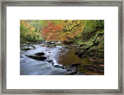 River Barle In Somerset Framed Print by Pete Hemington