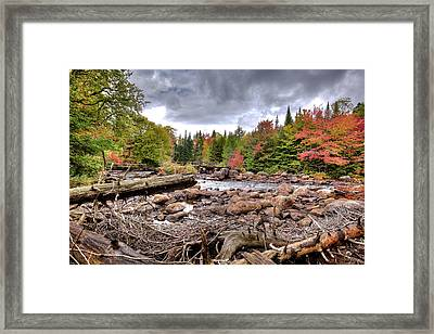 Framed Print featuring the photograph River Debris At Indian Rapids by David Patterson