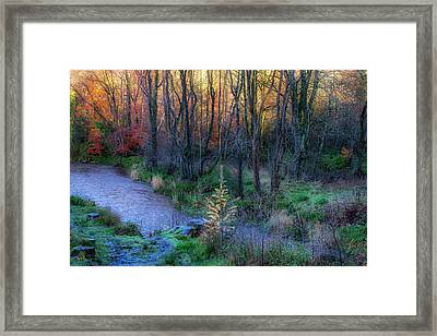 Framed Print featuring the photograph River Devon In Clackmannan by Jeremy Lavender Photography