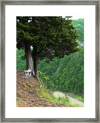 River Down Below Framed Print by Deborah Johnson
