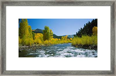 River Flowing In The Forest, San Miguel Framed Print