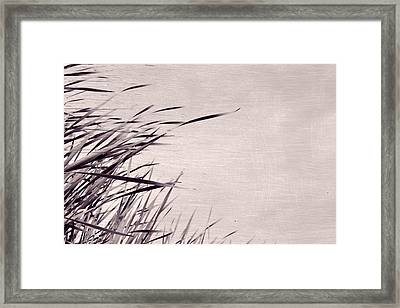 Framed Print featuring the photograph River Grass by Michelle Calkins