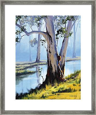 River Gum Framed Print