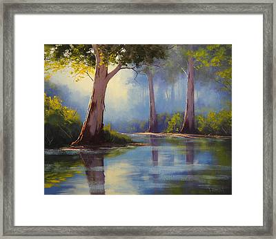 River Gum Trees Framed Print