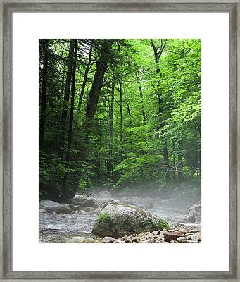 River Mist Framed Print