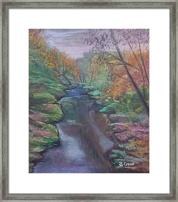 River In The Fall Framed Print