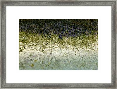 River Of Life Framed Print by Holly Kempe
