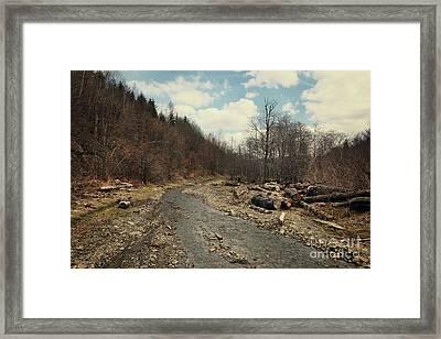 River On The Road Framed Print by Mykola Romanovsky