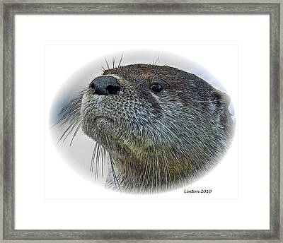 River Otter Framed Print by Larry Linton