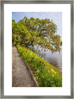 Framed Print featuring the photograph River Path 1 by Steven Ainsworth