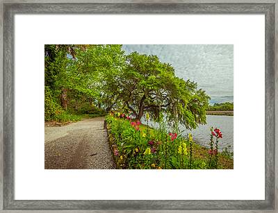 Framed Print featuring the photograph River Path II by Steven Ainsworth