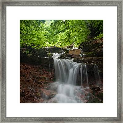 River Rapid Framed Print by Evgeni Dinev