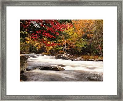 River Rapids Fall Nature Scenery Framed Print by Oleksiy Maksymenko