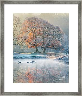 River Reflections - Winter Framed Print