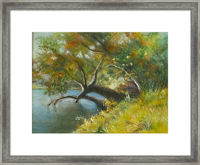 River Reverie Framed Print