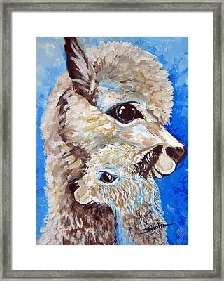 River Ridge Alpaca Framed Print