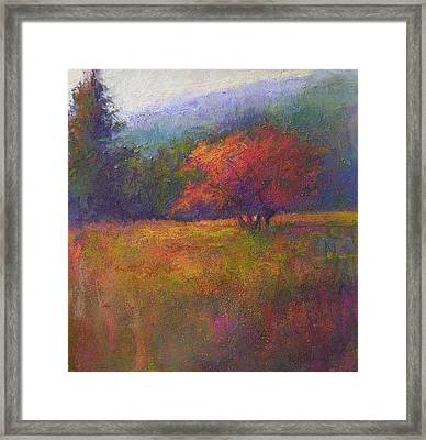 River Road Above New Hope Framed Print