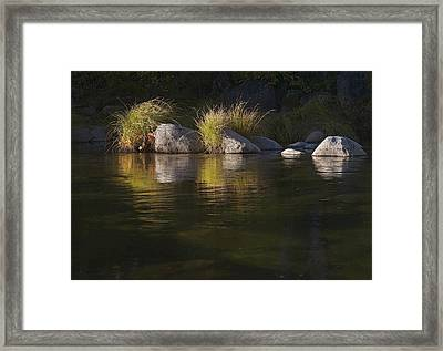 Framed Print featuring the photograph River Rocks And Grass by Larry Darnell