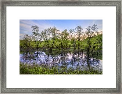 River Sentinels Framed Print by Debra and Dave Vanderlaan