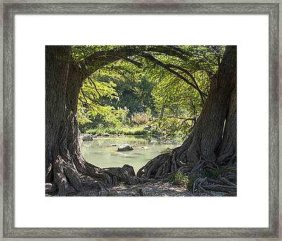 River Through Trees Framed Print