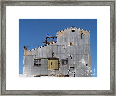 River Town Feed And Pet Country Store In Petaluma California Usa Dsc3854 Framed Print by Wingsdomain Art and Photography